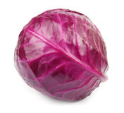 Head of red cabbage Stock Photo