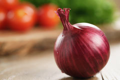 Head of red onion on wooden kitchen table with copy space Stock Image
