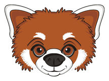 Head of  red panda Royalty Free Stock Photo