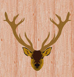 Head of reindeer on realistic wooden background Stock Photos