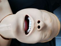 Head of resuscitation mannequin - open mouth. Head of mannequin for resuscitation cardiopulmonary on a stretcher - open mouth stock photography