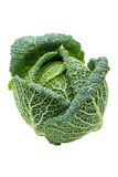 Head of ripe Savoy cabbage isolated Stock Image