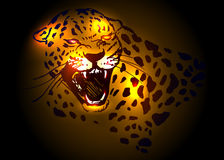 Head roaring jaguar. Vector illustration head roaring jaguar Royalty Free Stock Images