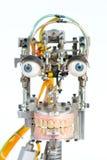 head robot Arkivbilder