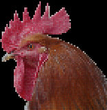Head of the rooster - mosaic Royalty Free Stock Photography