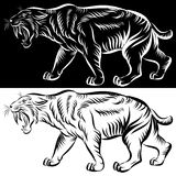 head of saber tooth tiger - vector Stock Image