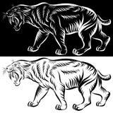Head of saber tooth tiger - vector. Vector illustration of saber-toothed tiger or smilodon on white background stock illustration