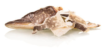 The head of salted fish and cleaning  on white Stock Image
