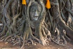 Head of The Sand Stone Buddha Image Royalty Free Stock Photos