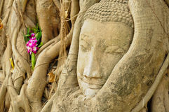 The head of the sandstone buddha Royalty Free Stock Photos