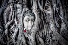 Head of Sandstone Buddha in Thailand Royalty Free Stock Photography