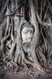 Head of Sandstone Buddha in Thailand Stock Photos