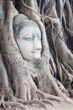 Head of Sandstone Buddha Stock Photos