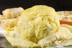 Head of sauerkraut. And rolled cabbage leaves on a table Royalty Free Stock Photo