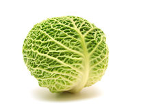 Head of savoy cabbage Stock Photo
