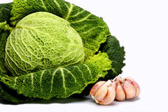 Head of the Savoy cabbage and garlic Royalty Free Stock Photo