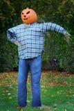 head scarecrow för stålarlykta o Arkivbild