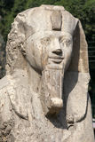 The head section of the alabaster sphinx of Amun-Ofis 2nd at Memphis, Egypt. The statue is 4.5 metres high and 8 metres long and once flanked the enterance of Stock Photos