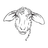 Head sheep black and white illustration Stock Images