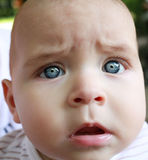 Head shoot of cute baby with blue eyes and surprise look Stock Photos