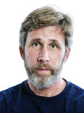 Head shot of a casually dressed caucasian man with a beard. Royalty Free Stock Photo
