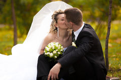 Head shot of newly married couple kissing at autumn park Stock Photos