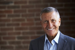 Head And Shoulders Portrait Of Mature Businessman In Office Stock Photos
