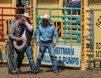 Head skada på rodeon Royaltyfria Bilder