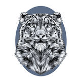 Head of the snow leopard royalty free illustration
