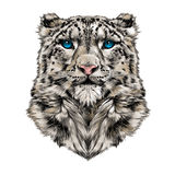 Head of the snow leopard Stock Photography