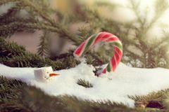 Cheerful solar spring warming. Head of snowman with carrot nose in melting snowdrift against a background of blurred outlines of candy staff and fir branches stock photography