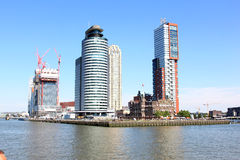 Head of south in dutch city of Rotterdam stock image