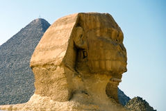 head sphinx Arkivbilder