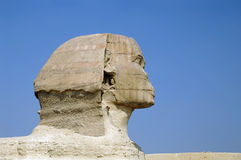 Head of Sphinx Royalty Free Stock Image