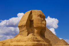 The head of the sphinx Royalty Free Stock Photo