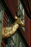 Head of a stag in gold as a wall decoration. Of a house in Norway stock photography