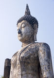 The head of a statue of Buddha in Old Sukhothai royalty free stock images