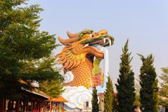 Head statue dragon in shrine park, Suphan Buri, su Royalty Free Stock Images