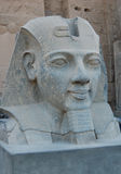 Head statue of Ramses II Royalty Free Stock Photo