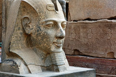 Head statue of Ramses II Royalty Free Stock Photos