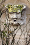 head sten Royaltyfri Bild