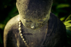 Head of stone Buddha statue Royalty Free Stock Images