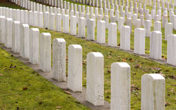 Head Stones Lined up Military Cemetary Graveyard Stock Images