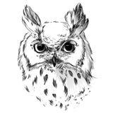 Head svartvit teckning för uggla` s royaltyfri illustrationer