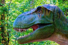 Head of T-rex. Head of an animatronic Tyrannosaurus Rex stock photos