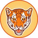 head tiger Fotografering för Bildbyråer