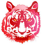 Head tiger. Vector illustration. A head of a tiger the red Royalty Free Stock Image