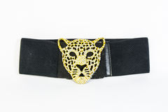 Head tiger buckle and belt isolated Stock Photography