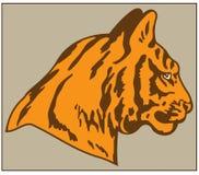 HEAD OF TIGER. Color image of tiger head predatory animal Vector Illustration