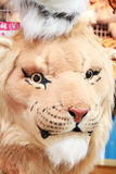 Head of tiger doll. Stock Photography